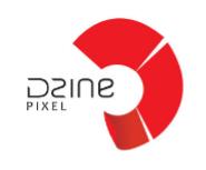 Wordpress developer Jobs in Bhubaneswar - Dzine Pixel
