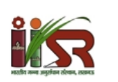 Young Professional Jobs in Lucknow - Indian Institute of Sugarcane Research