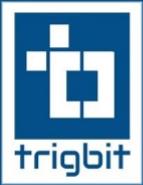 Online bidder Jobs in Mohali - Trigbit Technologies Pvt. Ltd.