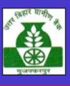 Architect / Consultants Jobs in Patna - Uttar Bihar Gramin Bank