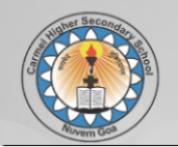 Teacher Physics Jobs in Panaji - Carmel Higher Secondary School