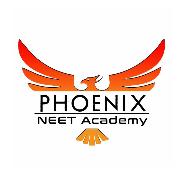 Teacher Jobs in Chennai - Phoenix NEET Academy