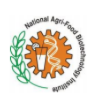 Project Fellow Agriculture Jobs in Mohali - National Agri-Food Biotechnology Institute