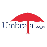 Executive - Social Media Jobs in Mumbai - Umbrella Aegis