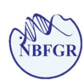 Young Professional-II Bioinformatics Jobs in Lucknow - NBFGR