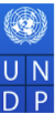 Individual Consultant – District Thematic Experts Jobs in Dehradun - UNDP