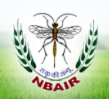 SRF Biotechnology Jobs in Bangalore - National Bureau of Agricultural Insect Resources