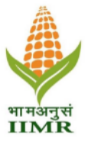 Young Professional I II Jobs in Ludhiana - Indian Institute of Maize Research