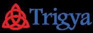 Sales Intern Jobs in Mumbai,Navi Mumbai,Pune - Trigya Technologies Pvt Ltd - Pune
