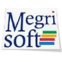 SEO Executive Jobs in Chandigarh - Megrisoft ltd