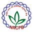 Young Professional- III/ JRF Jobs in Delhi - NRCPB