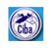 SRF/Technical Assistant Jobs in Chennai - CIBA