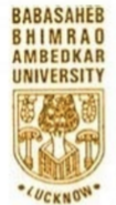 Resource Person Jobs in Lucknow - Babasaheb Bhimrao Ambedkar University