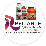 Sales/Marketing Executive Jobs in Ahmednagar,Akola,Amravati - RELIABLE INDUSTRIES