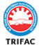 Assistant Grade-I II/ Computer Operator Jobs in Bhopal - M.P. Trade & Investment Facilitation Corporation Ltd.