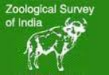 Project Fellow Biology/ Research Assistant Jobs in Kolkata - Zoological Survey of India