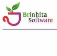 Sales/Marketing Executive Jobs in Bangalore - Brinhita Software OPC Private Limited