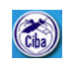 Young Professional-I Jobs in Chennai - CIBA