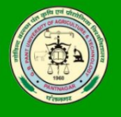 SRF MSc. Jobs in Nainital - GB Pant University of Agriculture - Technology
