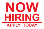 Back Office Executive Jobs in Jaipur - STAR SOLUTIONS