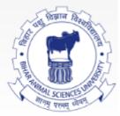 Guest Faculty Aquaculture Jobs in Patna - Bihar Animal Sciences University