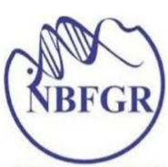 Senior Research Fellow Jobs in Lucknow - NBFGR