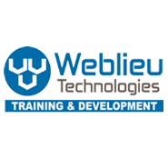 Computer Operator - Data Entry Jobs in Delhi - Weblieu Technologies