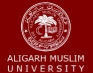 Guest Teacher Economics Jobs in Aligarh - Aligarh Muslim University