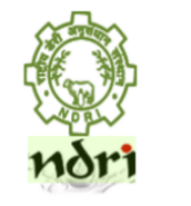 Research Associate Bioinformatics Jobs in Bangalore - NDRI