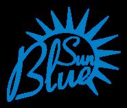 SEO Executive Jobs in Mumbai,Navi Mumbai - Blue sun info