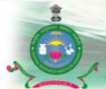 Medical Officer Jobs in Kangra - Central Research Institute Kasauli
