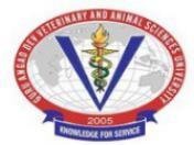 Research Fellow Jobs in Ludhiana - GADVASU