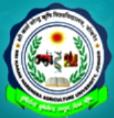 Computer Operator / SRF Horticulture Jobs in Jaipur - Sri Karan Narendra Agriculture University