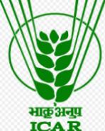 SRF Agricultural Entomology Jobs in Delhi - NCIPM