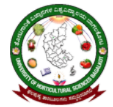Research Associate Horticulture Jobs in Bangalore - University of Horticultural Sciences