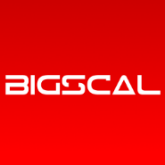 .Net Developer Jobs in Surat - Bigscal Technologies PVt Ltd