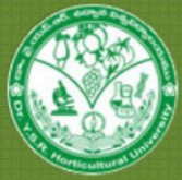 Assistant Professor Jobs in Shimla - Dr YSR Horticultural University