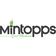 RPA System Admin Jobs in Hyderabad - Mintopps Pvt Ltd