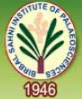 Birbal Sahni Research Scholars Jobs in Lucknow - Birbal Sahni Institute of Palaeosciences