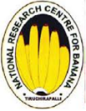Young Professional I/ SRF Agronomy Jobs in Trichy/Tiruchirapalli - National Research Centre For Banana