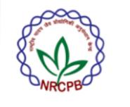 Research Associate Plant Breeding Jobs in Delhi - NRCPB