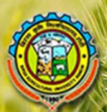 Assistant Professor / Junior Scientist Jobs in Ranchi - Birsa Agricultural University