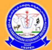 Teaching Faculty Jobs in Tirupati - Sri Venkateswara Veterinary University