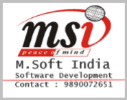 Sales Executive Jobs in Nanded - M.Soft India