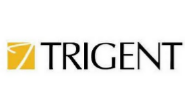 Technical Analyst Jobs in Gurgaon,Bangalore - Trigent Software