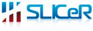 Customer Success Executive Jobs in Bangalore - Slicer Solutions Pvt Ltd