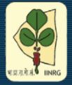 Subject Matter Specialist/ Agromet Observer Jobs in Ranchi - Indian Institute of Natural Resins and Gums