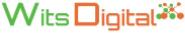 Web Designing - Intern Jobs in Delhi,Ghaziabad,Noida - Wits Digital Pvt. Ltd.
