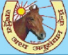 Young Professional-II Jobs in Hisar - National Research Centre on Equines