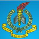 PRT/Accountant Jobs in Jalandhar - BSF Primary School Jalandhar.